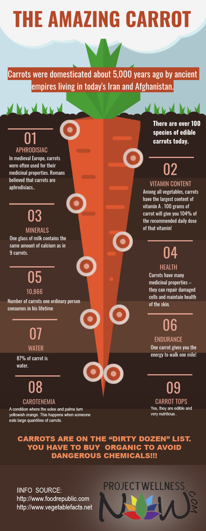 9 Strong Reasons to Eat Carrots Regularly - Infographic