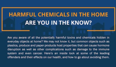 How to Avoid the Effects of Harmful Chemicals at Home - Infographic