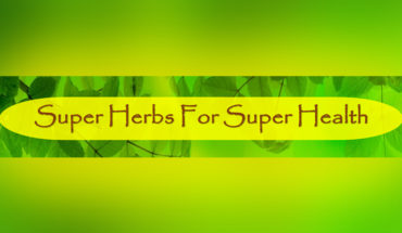 Super-Herbs and Their Super Powers - Infographic