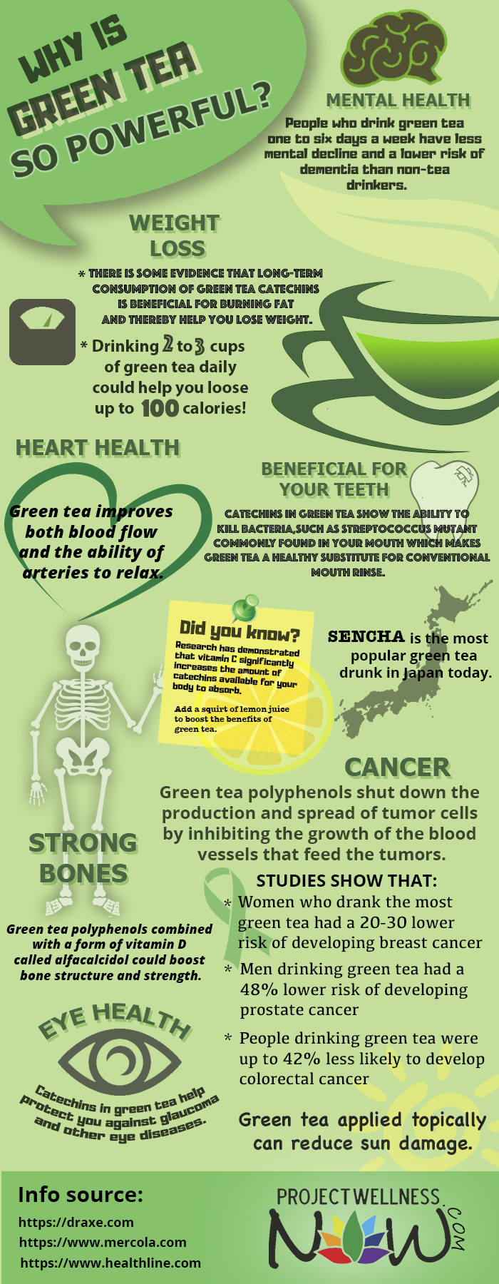 Why is Green Tea Considered the New Power Drink? - Infographic