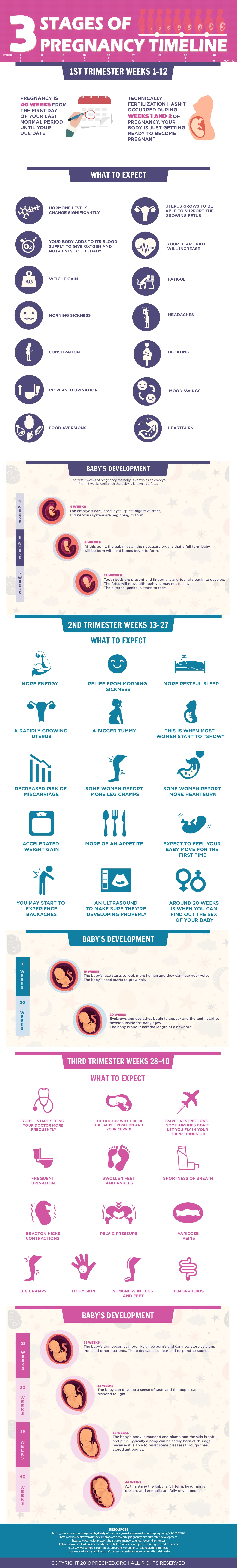 Comprehensive Guide on the 3 Trimesters of Pregnancy - Infographic