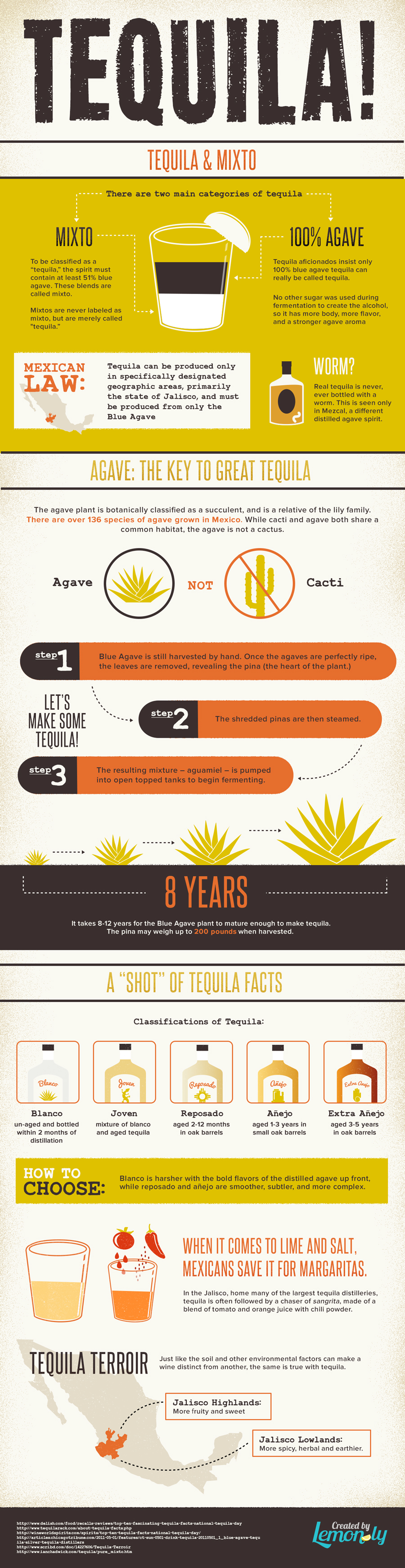 Love It or Hate It, Tequila Raises Passion: Unbottling Some Tequila Truths - Infographic
