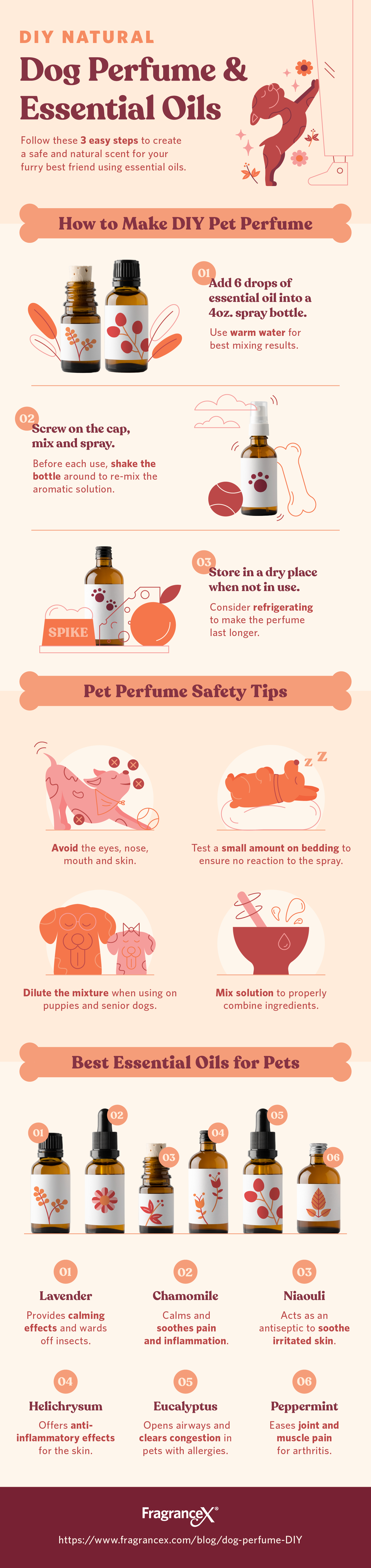 DIY Natural: Dog Perfume & Essential Oils - Infographic