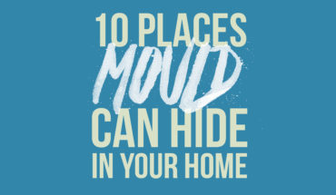 10 Hotspot Zones for Mold and How to Keep Your Home Safe - Infographic