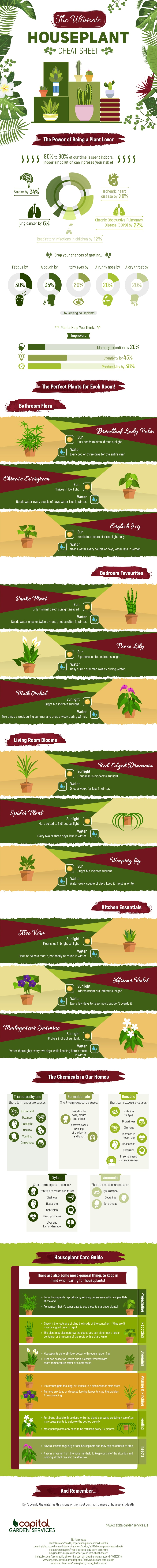 Best Indoor Houseplants: A Room-wise Guide - Infographic