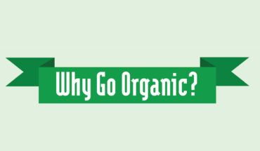 Go Organic: The Healthier, More Responsible Choice - Infographic