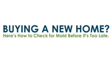 How to Check for Harmful Mold Before Buying a New Home - Infographic
