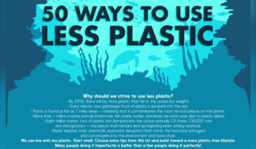 50 Simple Methods to Reduce Your Plastic Footprint - Infographic