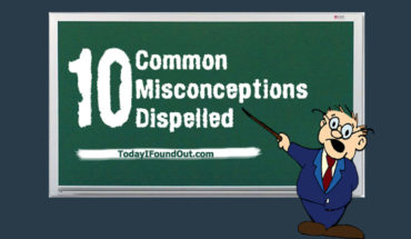Myth Vs Reality: Correcting 10 Common Misconceptions - Infographic