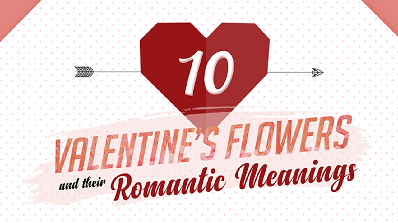 Say It with Flowers: Choosing the Right Valentine Bouquet - Infographic