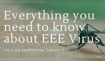 The Triple-E Sickness: Everything You Need to Know About EEE - Infographic