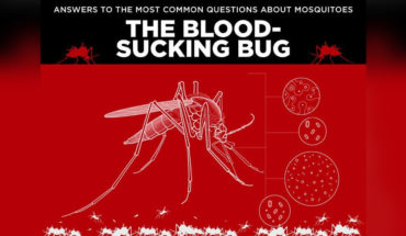 Blood-Sucker Facts: Everything You Wanted to Know About Mosquitoes - Infographic
