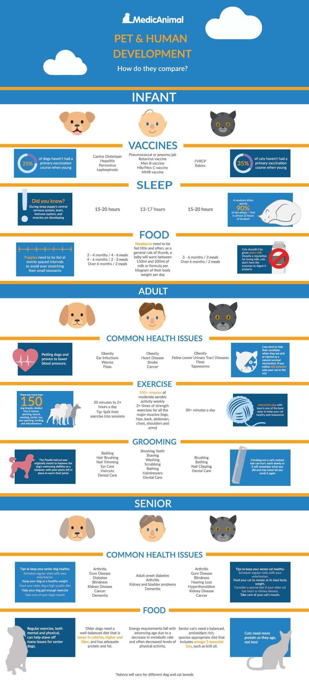 Understanding and Ensuring Your Dog or Cat's Developmental Needs - Infographic
