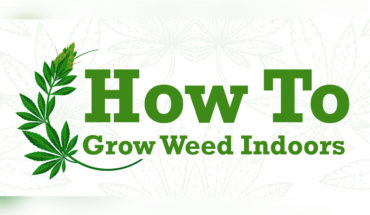 Growing Marijuana Indoors - Infographic