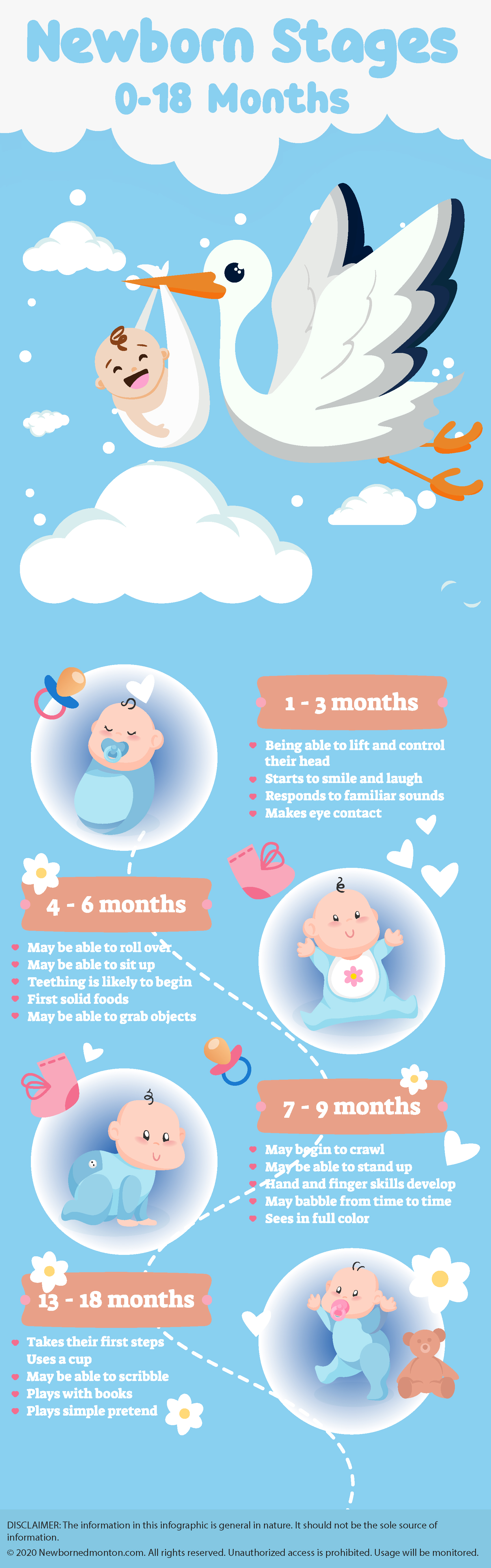 0-18 Months - Stages Of A New Born Baby - Infographic