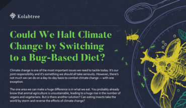 Will You Have To Eat Bugs To Save The Environment? - Infographic