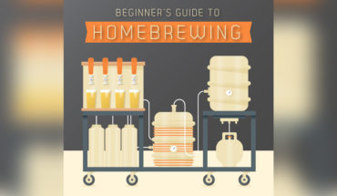 DIY: How To Brew Your Own Beer - Infographic