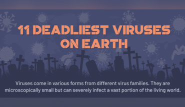 Interesting Facts About The 11 Deadliest Viruses In The World