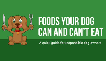 Can My Dog Eat That? A List Of Foods Dogs Can and Cannot Eat